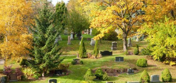 O que é um cemitério parque e como ele se diferencia dos tradicionais
