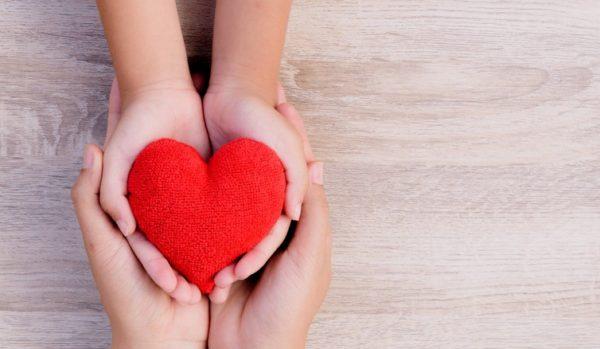 Entenda como funciona a doação de órgãos no Brasil