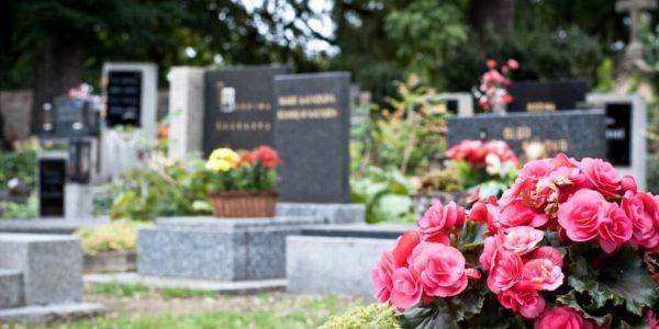 Aprenda a melhor maneira de escolher um cemitério