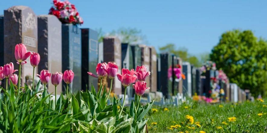 Cemitérios particulares ou públicos municipais: entenda as diferenças